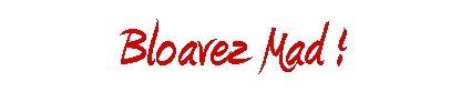 bloavez-mad-2013-b